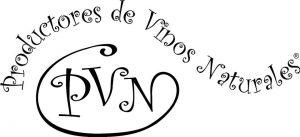 logo pvn