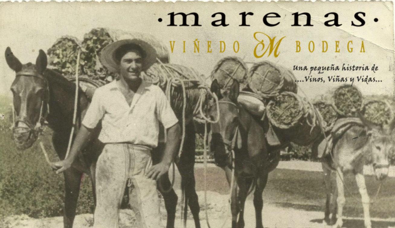 Marenas Viñedo y Bodega, Vinos Naturales, Montilla, Córdoba